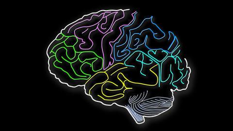 Human Brain 14 Stock Video Footage