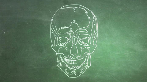 Human Skull 09 front Stock Video Footage