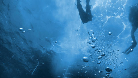 Divers preparing to dive, Red sea Stock Video Footage