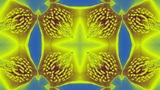 Beautiful magnolia bloom Kaleidoscope.pattern,four consecutive,illustration,cart Animation