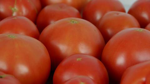 A set of fresh tomato fruit Stock Video Footage