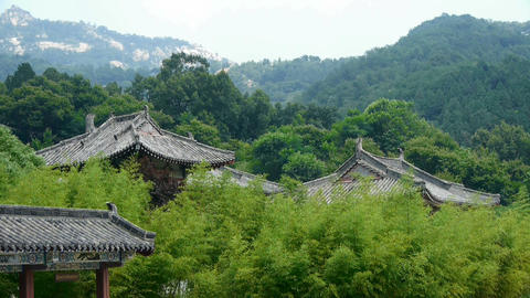 China ancient architecture temple in bamboo forest Stock Video Footage