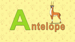 Antelope. English ZOO Alphabet - letter A Live Action