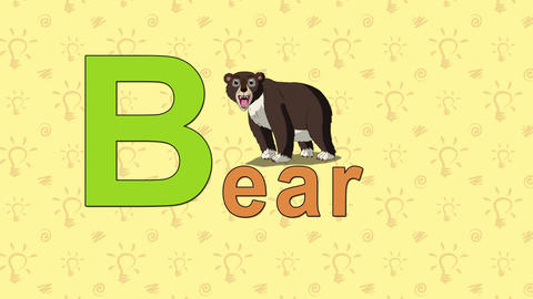 Bear. English ZOO Alphabet - letter B Live Action