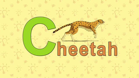 Gepard (cheetah). English ZOO Alphabet - letter C Live Action