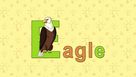 Eagle. English ZOO Alphabet - letter E Live Action