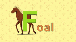 Foal. English ZOO Alphabet - letter F Live Action