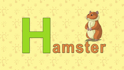 Hamster. English ZOO Alphabet - letter H Live Action