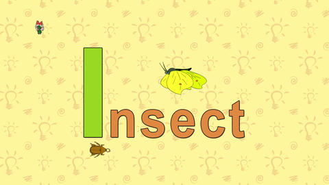 Insect. English ZOO Alphabet - letter I Footage