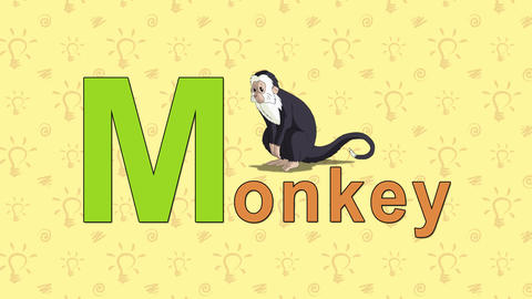 Monkey. English ZOO Alphabet - letter M Live Action