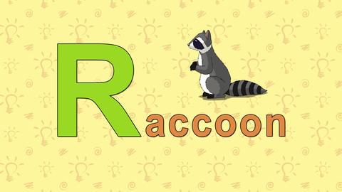 Raccoon. English ZOO Alphabet - letter R Footage