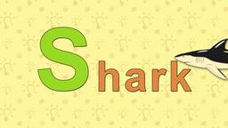 Shark. English ZOO Alphabet - letter S Live Action
