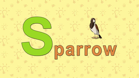 Sparrow. English ZOO Alphabet - letter S Live Action