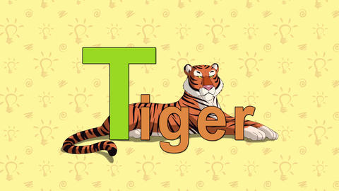 Tiger. English ZOO Alphabet - letter T Footage
