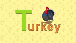 Turkey. English ZOO Alphabet - letter T Live Action