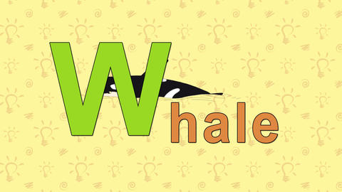 Whale. English ZOO Alphabet - letter W Footage