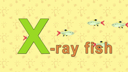 X-ray Fish. English ZOO Alphabet - letter X Live Action