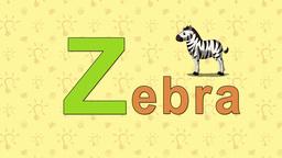 Zebra. English ZOO Alphabet - letter Z Footage