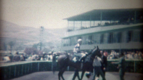 1969: Horseracing finishing line and winner prancing around after race Footage