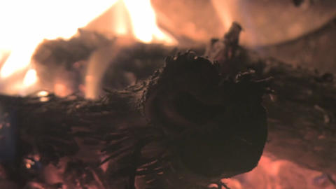 Burning wood in the fireplace Footage