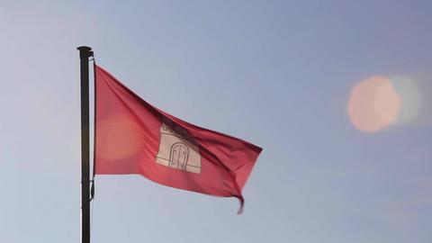 Flag of Hamburg, Germany ビデオ