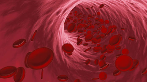 Red blood cells flowing through vein or artery Animation