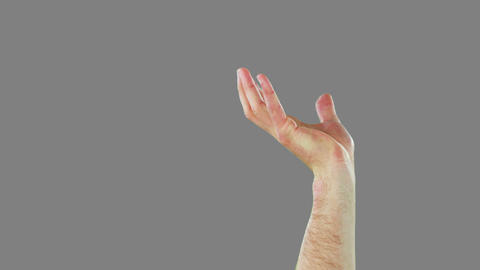 Close-up of hands gesturing Live Action