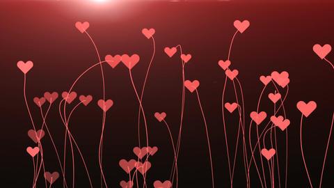 Hearts on Stalks Animation