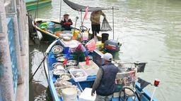 Fisherman in the boat ビデオ