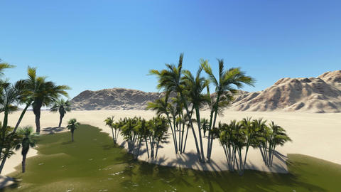 Oasis in the desert made in 3d software Animation