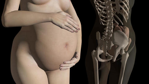 Pregnant woman,growing belly, animation, slow motion Animation