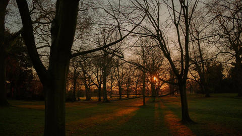 POV gimbal shot on a wintry landscape with the sun setting behind bare trees in  Footage