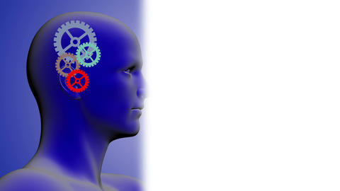 rotating gears inside of the head made with AE cs5 and 3d max software Animation