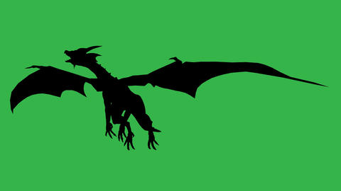 Dragon in fly silhouette made in 3d software Animation