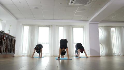 Three beautiful women doing yoga together Footage