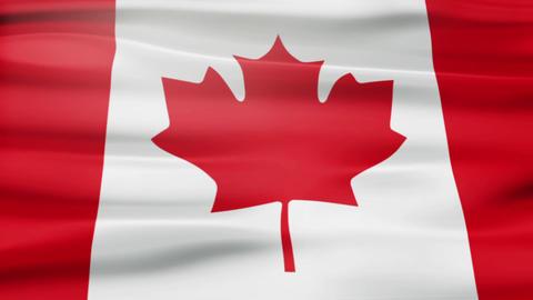 Canada flag CG動画素材