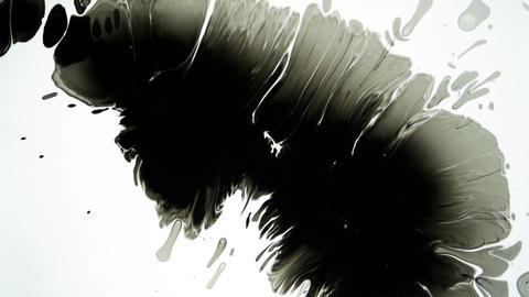 Splash Of Black Ink or Paint On White Background Live Action