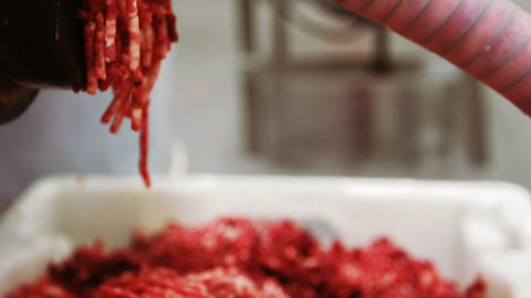 Minced meat coming out from grinder Live Action