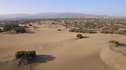 Aerial landscape with sand and plants Footage