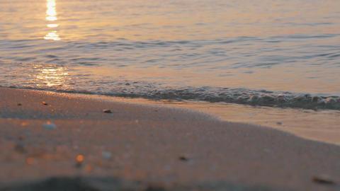 Sea waves rolling on the shore at sunset Acción en vivo