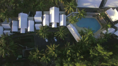 Aerial top view of tree top, camera moves to the hotels district and then to san Live Action