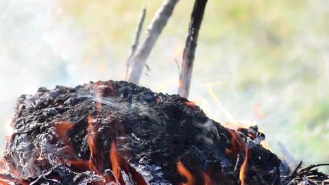 Flames that bribe a sacrifice over a funeral pyre decorated with ram horns 2363 Footage