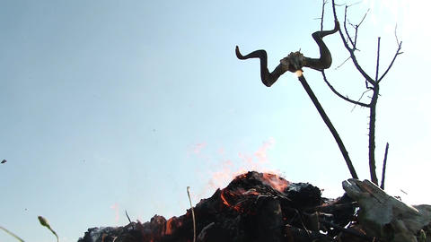 Funeral pyre decorated with ram horns placed in the middle of a field with low g Footage