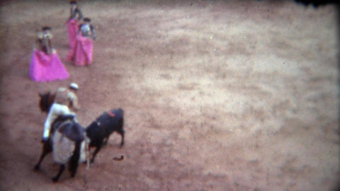 1956: Armored horse take violent blows from bull in matador ring Footage