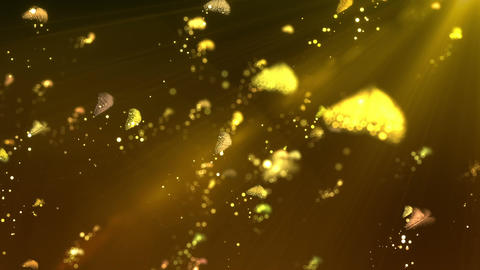 SHA ButterFly Image Background Yellow Animation