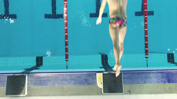 Top view of swimmer jumps off starting block into pool water HD video Footage