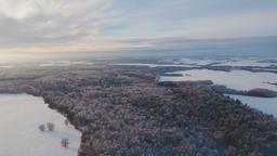 Winter landscape with forest, field. Winter landscape Footage