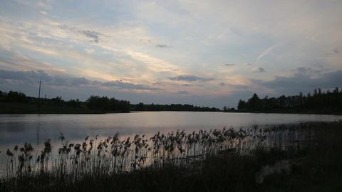 Lake at sunset Footage