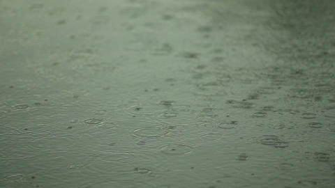 Water surface with raindrops Footage