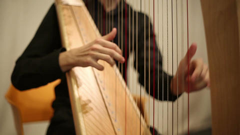 The musician plays the harp GIF